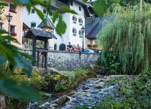 Photos from Bled Slovenia